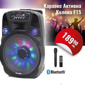 Караоке Тонколона 15 инча PAudio-151, Безжичен Микрофон, акумулаторна батерия, Bluetooth, FM радио, USB, micro SD card player 3
