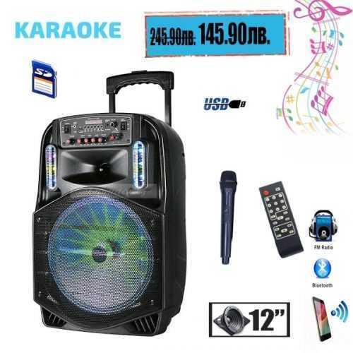 Караоке Тонколона 12 инча PAudio безжичен Микрофон, Цветомузика, Bluetooth, FM радио, USB, micro SD card player, акумулаторна батерия 3