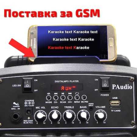 Караоке Тонколона 15 инча PAudio-151, Безжичен Микрофон, акумулаторна батерия, Bluetooth, FM радио, USB, micro SD card player 6