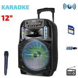 Караоке Тонколона 12 инча PAudio безжичен Микрофон, Цветомузика, Bluetooth, FM радио, USB, micro SD card player, акумулаторна батерия 5