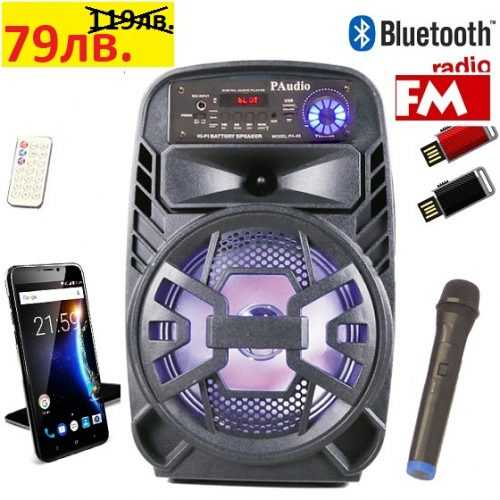 Караоке Тонколона 8 инча PAudio-80, Безжичен Микрофон, акумулаторна батерия, Bluetooth, FM радио, USB, micro SD card player 3