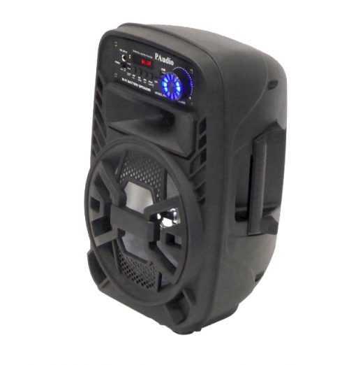 Караоке Тонколона 8 инча PAudio-80, Безжичен Микрофон, акумулаторна батерия, Bluetooth, FM радио, USB, micro SD card player 5