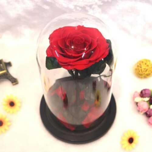 Луксозна вечна роза в стъкленица BEAUTY&THE BEAST RED, 27см 4