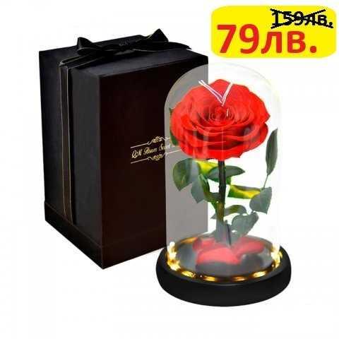Луксозна вечна роза в стъкленица BEAUTY&THE BEAST RED, 27см 2